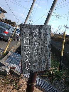 20100115132137