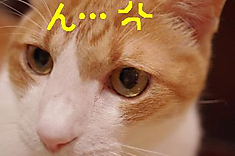 3_20110925010842