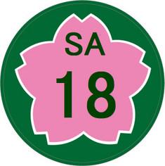 Sa1_3