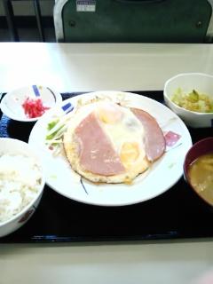 ランチ【1<br />  月14日】