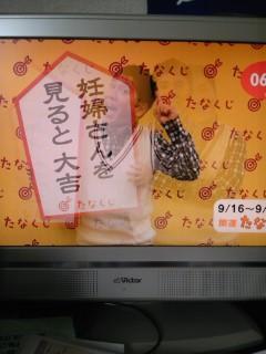 野分の朝【9<br />  月16日】